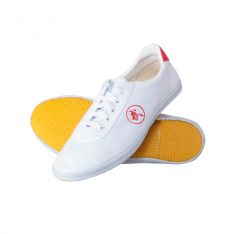 Junior Kung Fu Shoes